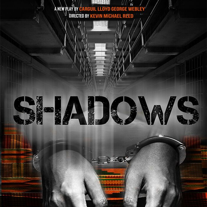 SHADOWS_700x700px_preview